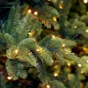 CHRISTMAS TREES ARE ARRIVING SOON!